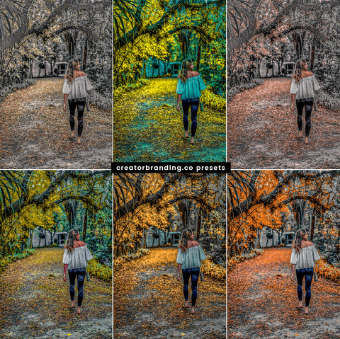 Lightroom Presets: 10 Fall Foliage Preset Filters