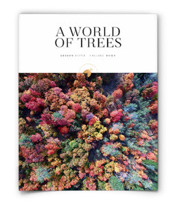 A World of Trees