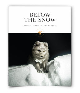Below the Snow