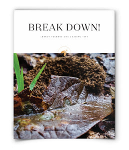 Break Down!