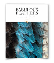 Fabulous Feathers
