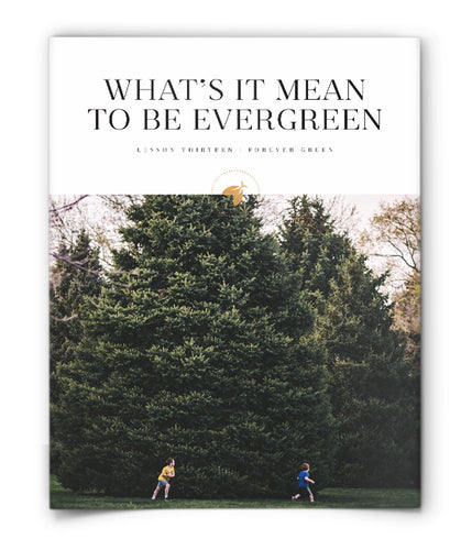 What's It Mean to Be Evergreen?