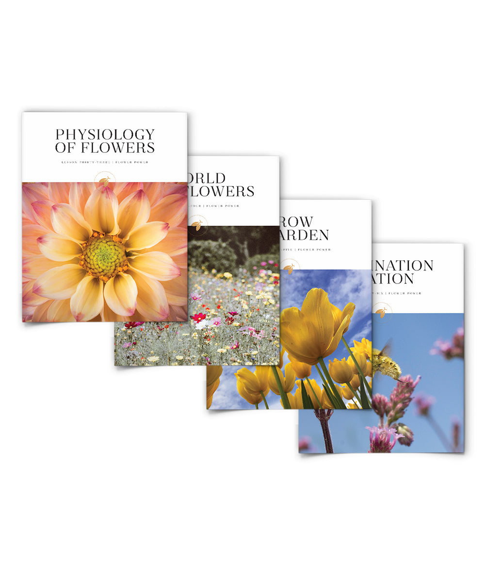 Flower Power Bundle