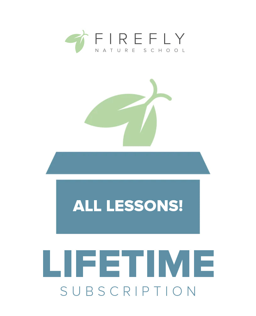 Firefly Subscription - Lifetime