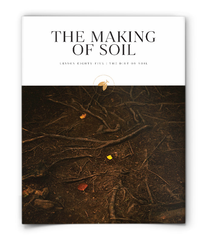 The Making of Soil