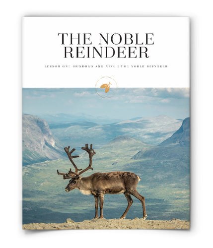 The Noble Reindeer