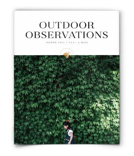 Outdoor Observations
