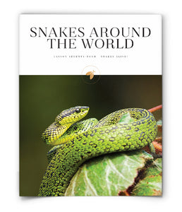 Snakes Around the World