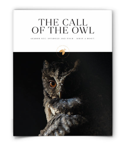 The Call of the Owl