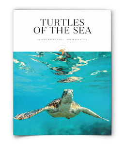 Turtles of the Sea