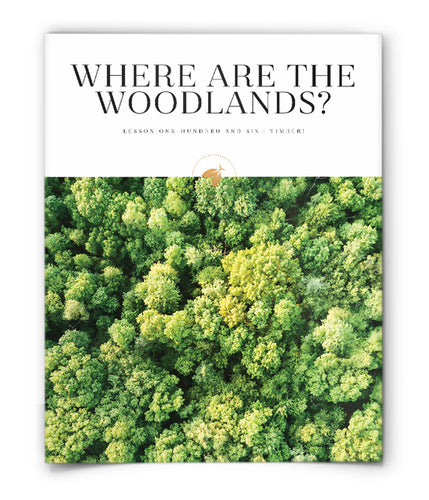 Where are the Woodlands?