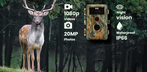 Our Blazevideo Hunting Cameras all have clear LCD screen to view photos and videos