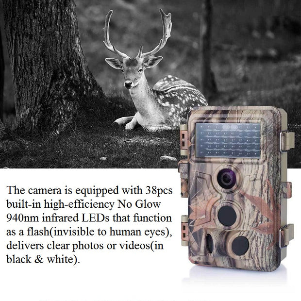 2-Pack Trail Game Cameras for Wildlife Hunting & Home Security 20MP H.264 1080P MP4 Video Waterproof Motion Activated Photo & Video Model