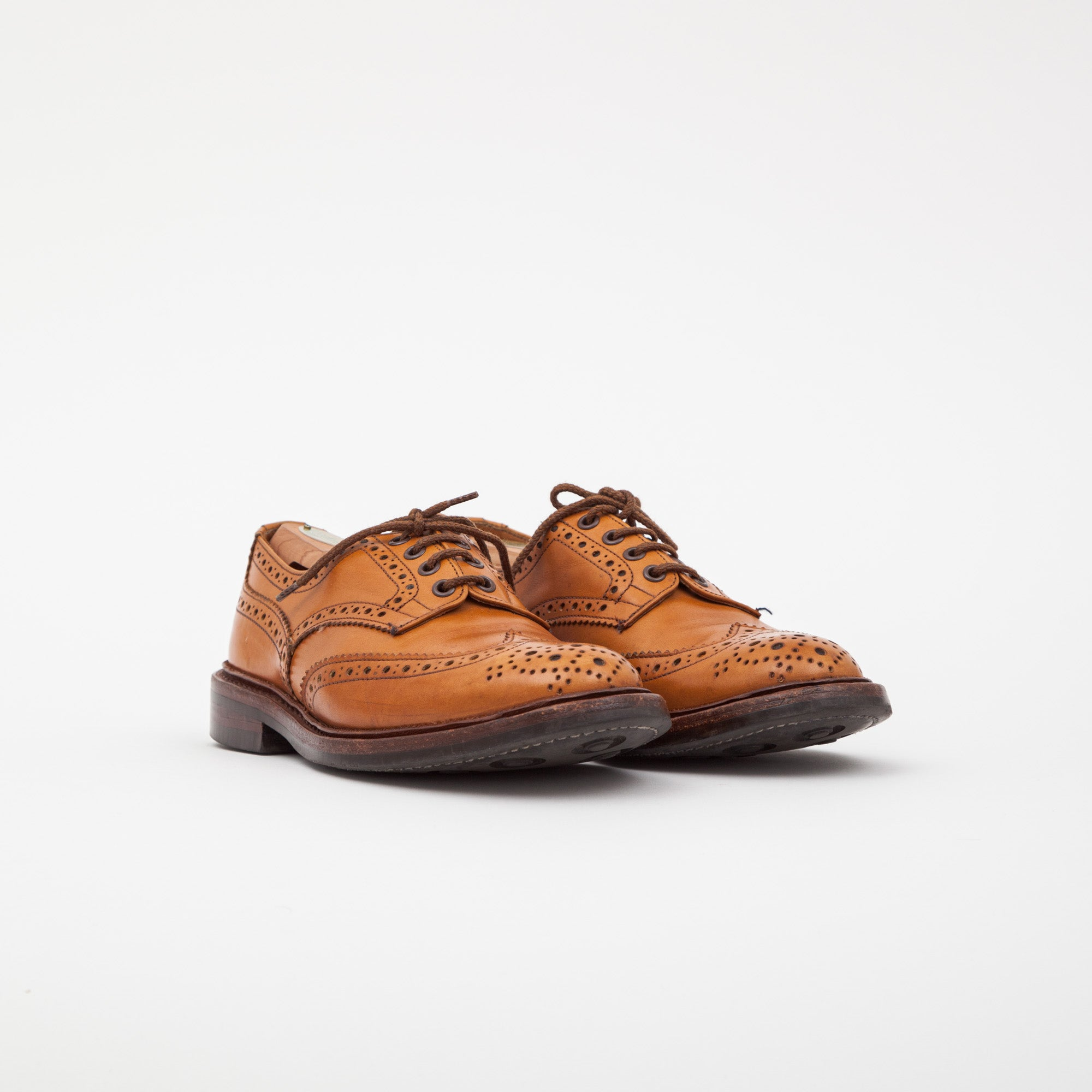 Acorn Bourton Shoe