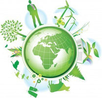 Sustainable Strategies Used by Successful Companies Across the World