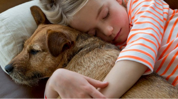 Adopting A Pet....Why Now and What to Expect