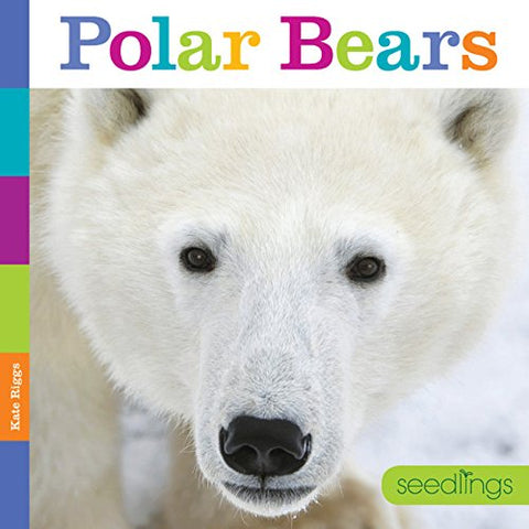 Seedlings: Polar Bears