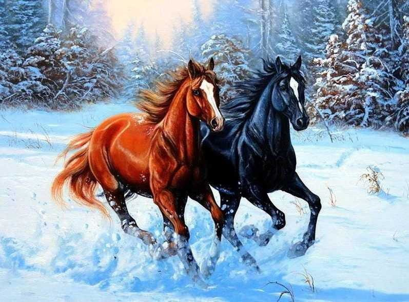 5D Diamond Painting Embroidery Kit Horses Drawing Alisa Diamond Paintings