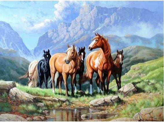 5d Diamond Painting Embroidery Kit Horses Drawing 30x40 ALISA Diamond Paintings