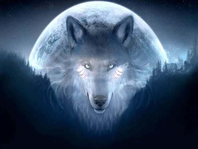 5D Full Coverage Diamond Embroidery Kit Wolf Full Moon Night Alisa Diamond Paintings