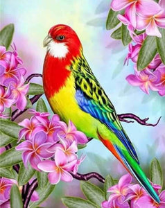 Colorful Parrot Full Coverage Diamond Art Painting Kits ALISA Diamond Paintings
