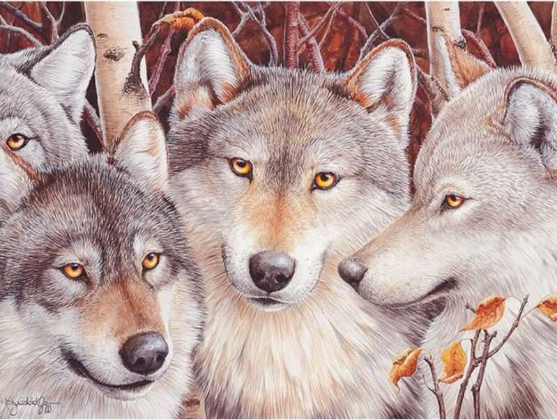 Diamond Painting Embroidery Wolf - Wolves In Forest Animals Alisa Paintings