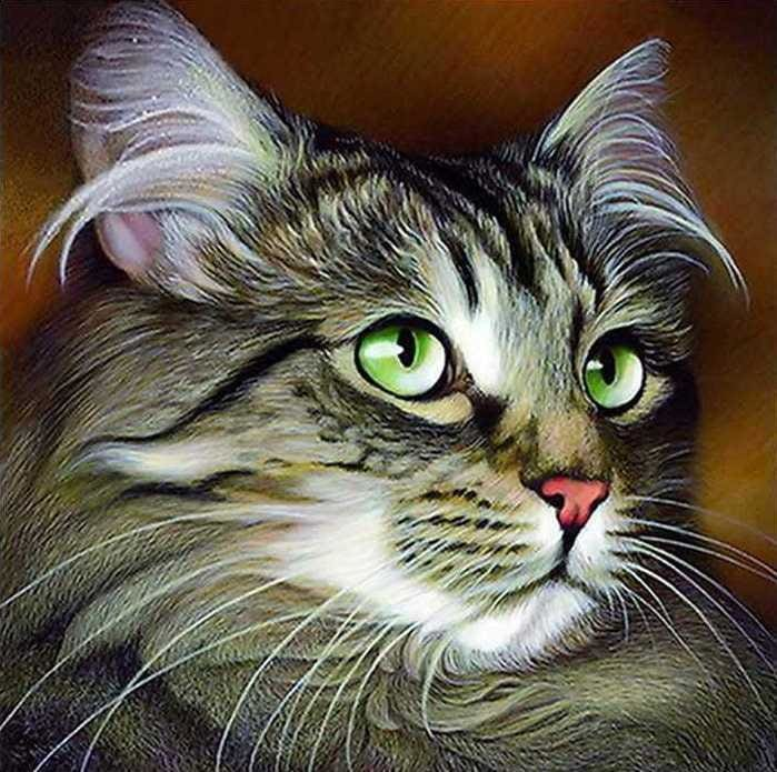 Full Diamond Embroidery Kit Cat Alisa Diamond Paintings