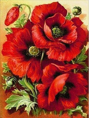 Poppies Spring Flowers Full Drill 5d Diamond Painting ALISA Diamond Paintings