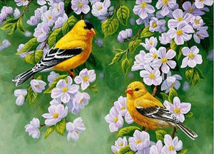 Full Square/Round Drill Diamond Painting Kit Bird In Flowers ALISA Diamond Paintings