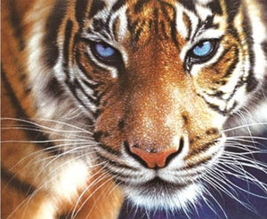 The Tiger - 5D Diy Animals Diamond Painting Alisa Diamond Paintings