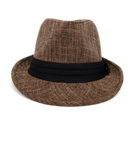 Fall/Winter Brown Trilby Fedora Hat