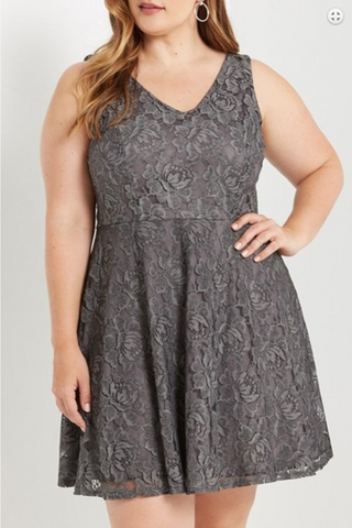 Plus Lace Fit and Flare Sleeveless Dress