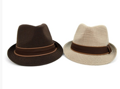 Fall/Winter Trilby Fedora Hat with Brown Band Trim