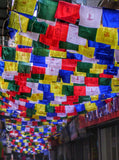 Prayer Flag Display Nepal - Photo courtesy of Sara Calvin