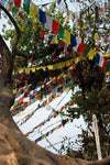 Swayambu Prayer Flags