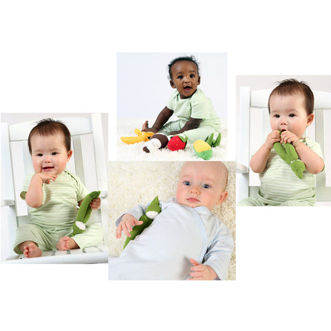 Organic Veggies - Safe and Fun Teething Toys for Baby