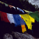 Large Traditional Tibetan Windhorse Block Printed Prayer Flag