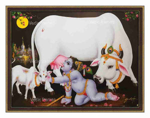 Little Krishna drinking milk from cow