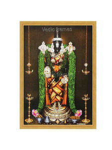 Lord Venkateshwara nethra Dharshan with thulasi garland