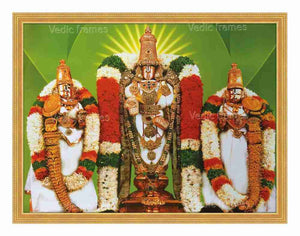 Lord Balaji with Sridevi and Bhoodevi in white vasthram in green background