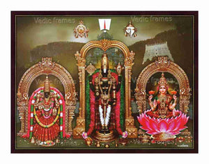 Lord Venkateswara with Mahalakshmi and Padmavathi with green and pink garland in Thirumala  background (olive green)