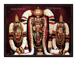 Lord Venkateswara utsavar with Sridevi and Bhoodevi in red designed background