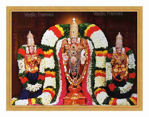 Lord Venkateswara Utsavar with Sridevi and Bhoodevi in pillar background (blue vasthram)