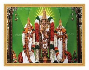 Lord Venkatesawara with Sridevi and Bhoodevi on sides with Pillars in a green background (white vasthram)