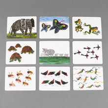 Load image into Gallery viewer, The World of Eric Carle Number Flash Cards
