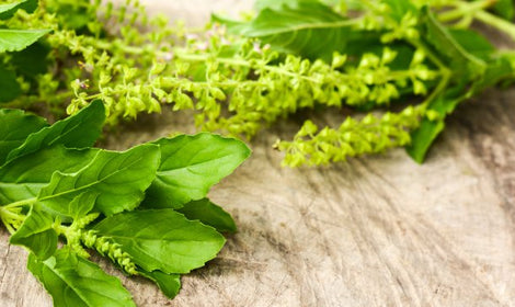 7 Adaptogenic Herbs that Help Reduce Stress