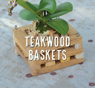 Teakwood Baskets - Big Grass Living