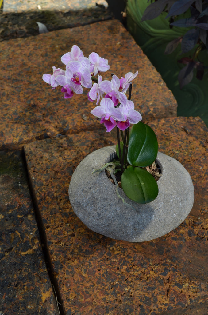 River Rock Planter: 5 pcs/unit. Unit price: $130.00