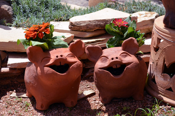 Happy Pig Pots