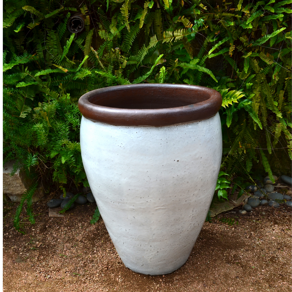 White planter with Brown Rim